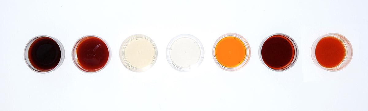 〔しょう油  ソース  ケチャップ  す  レモン果汁  タバスコ  ラー油〕などのうち、5 品くらい