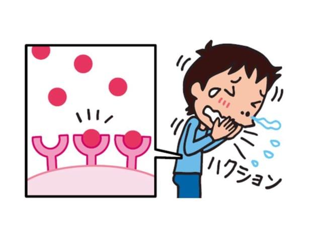 アレルギーの治りょうに使われるくすり
