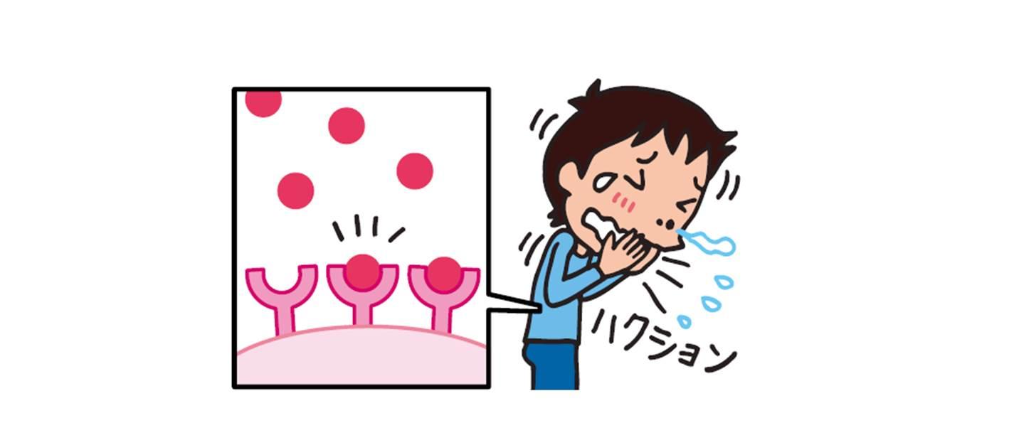 調べ学習 アレルギーの治りょうに使われるくすり