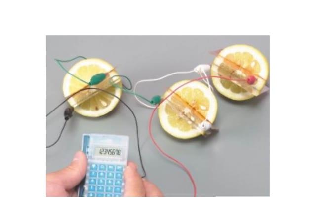 果物や活性炭で電池を作ろう