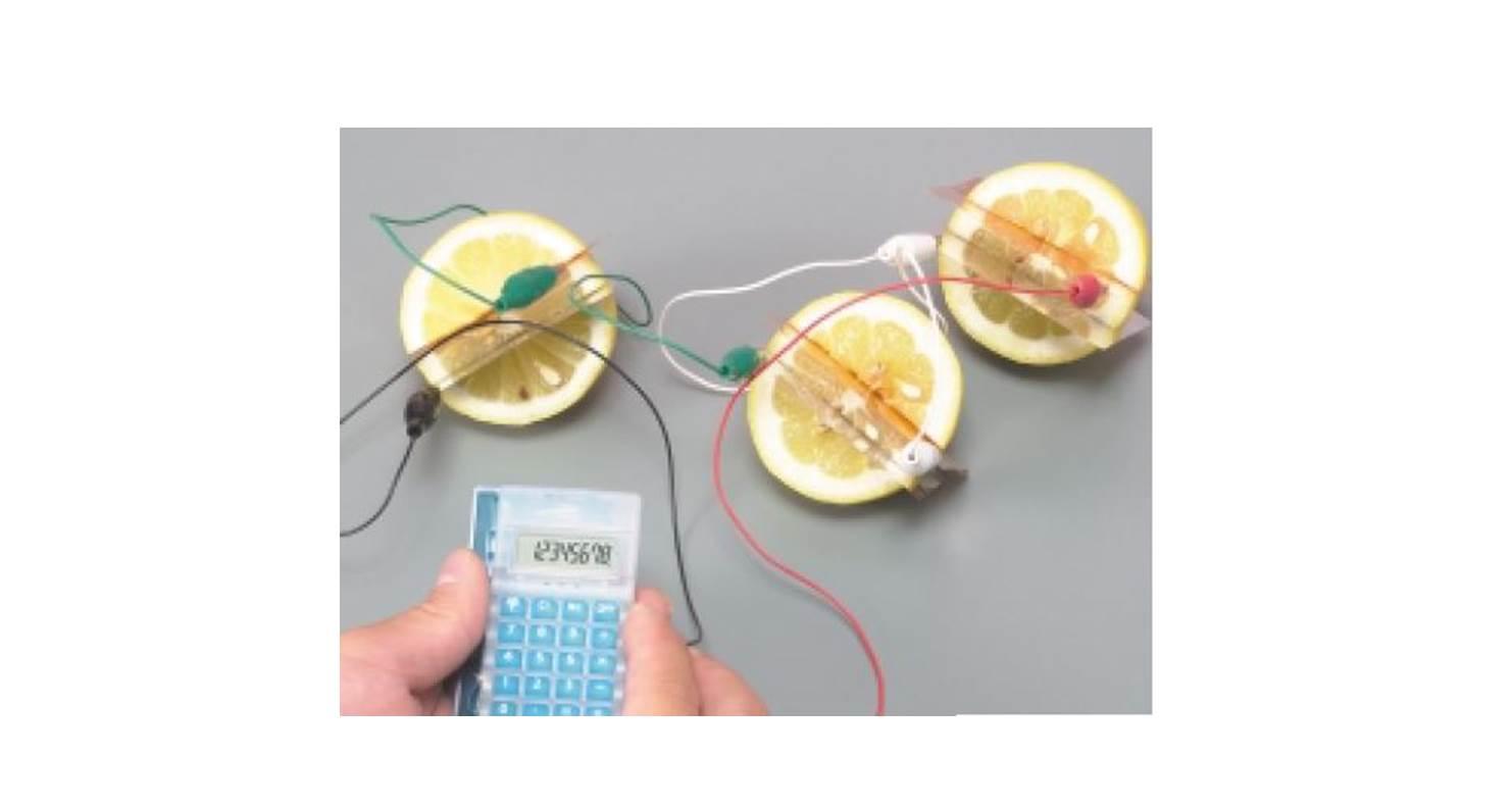 実験 果物や活性炭で電池を作ろう