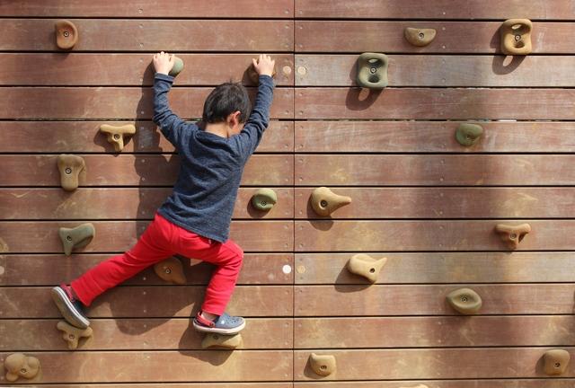 主体的に学び続ける力が大事。そのためには?/子どもが伸びる親力【第31回】