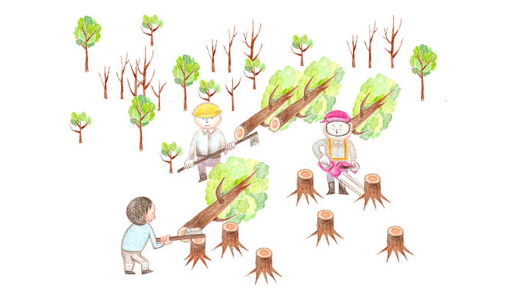 地球全体で森がどんどん減っているって本当ですか?(森林破壊)