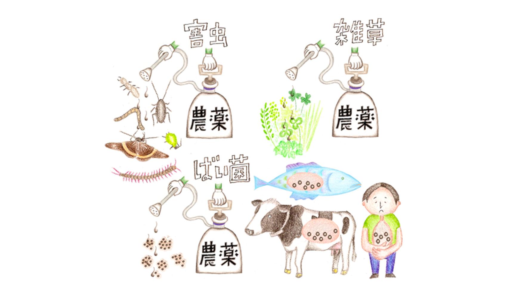 米や野菜を作るときに使う農薬は危険なのですか?