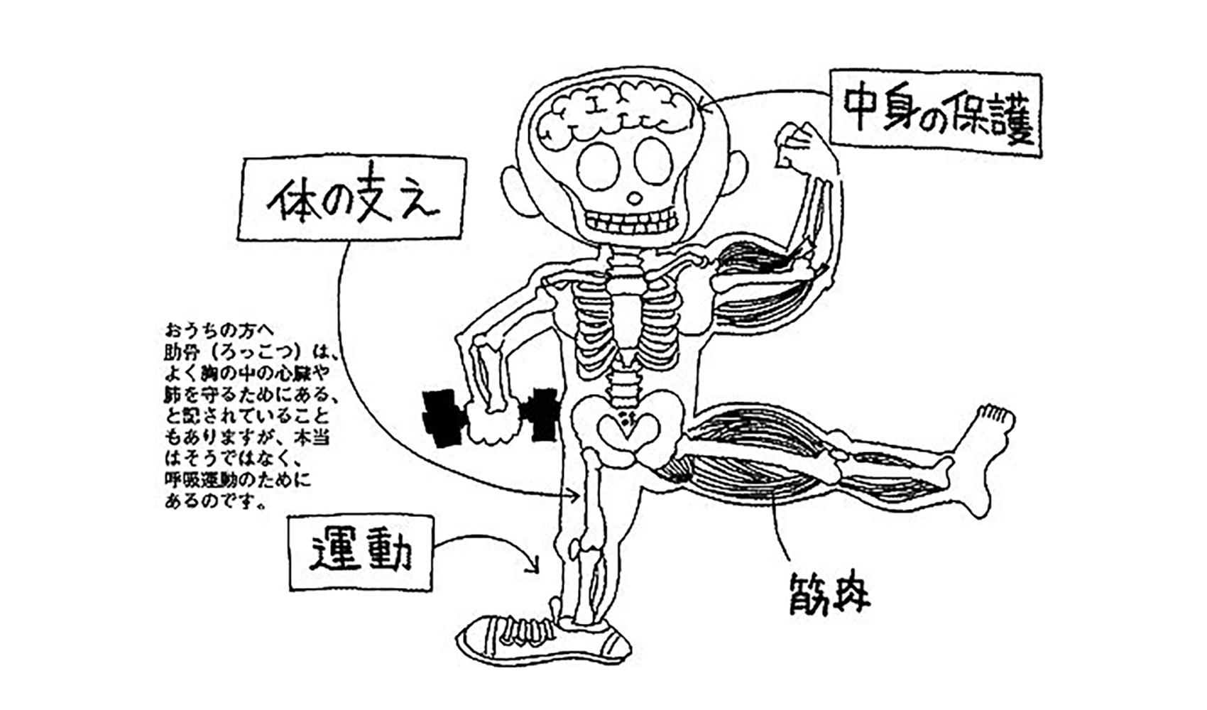 骨はどうしてあるの