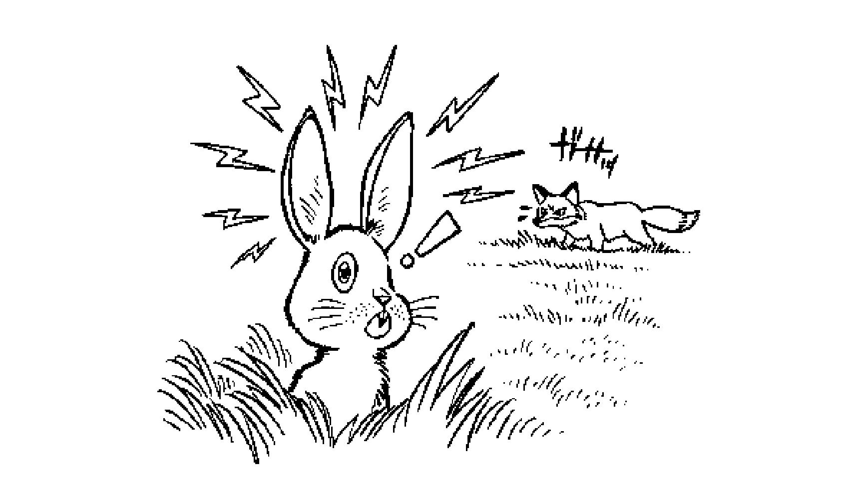 ウサギの耳はどうして長いの