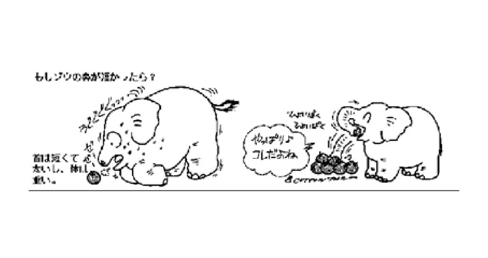 ゾウの鼻はどうして長いの