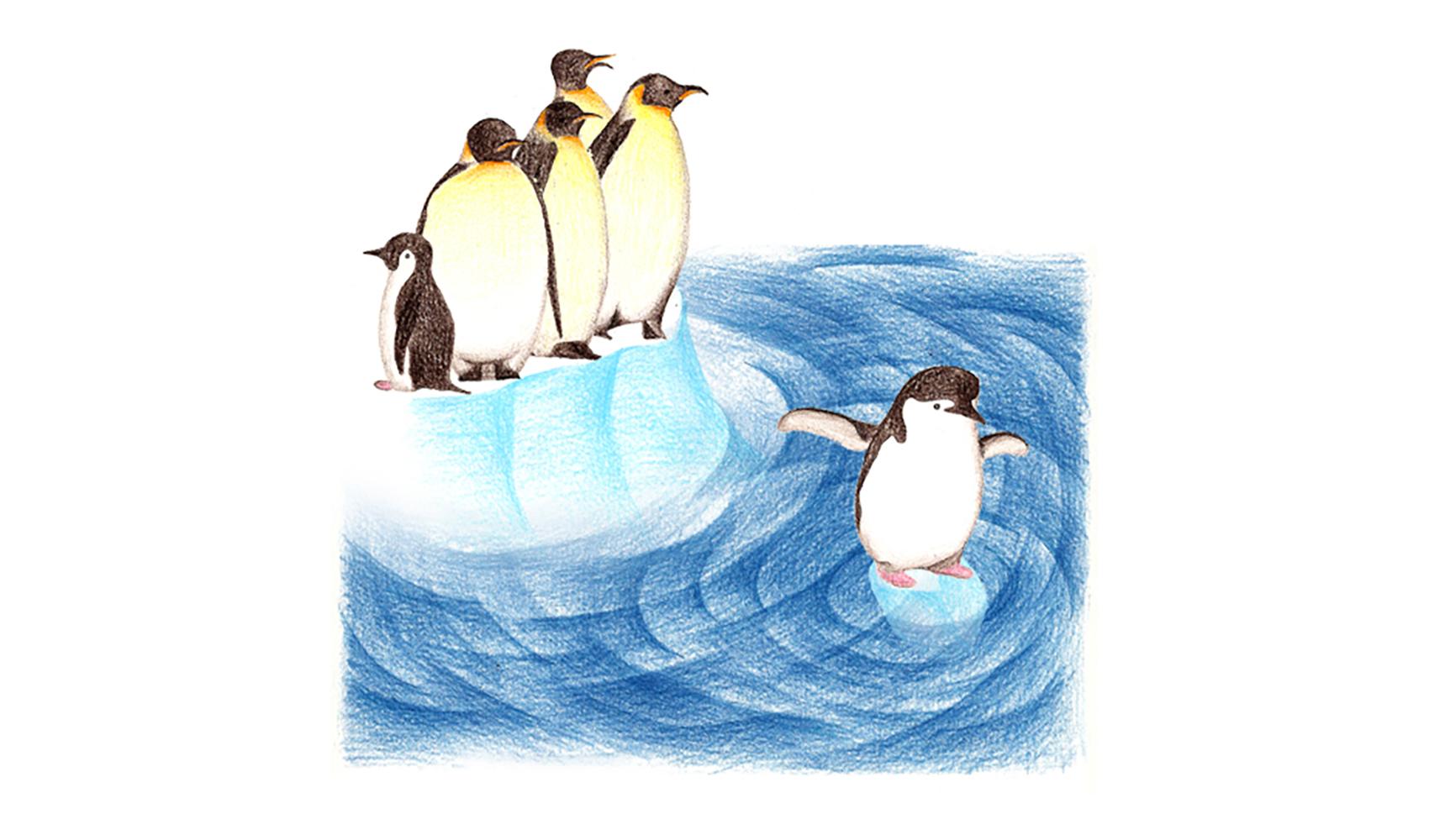 生き物 南極