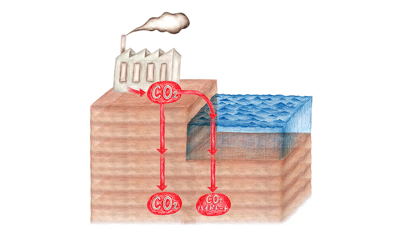 CCSとは何ですか?