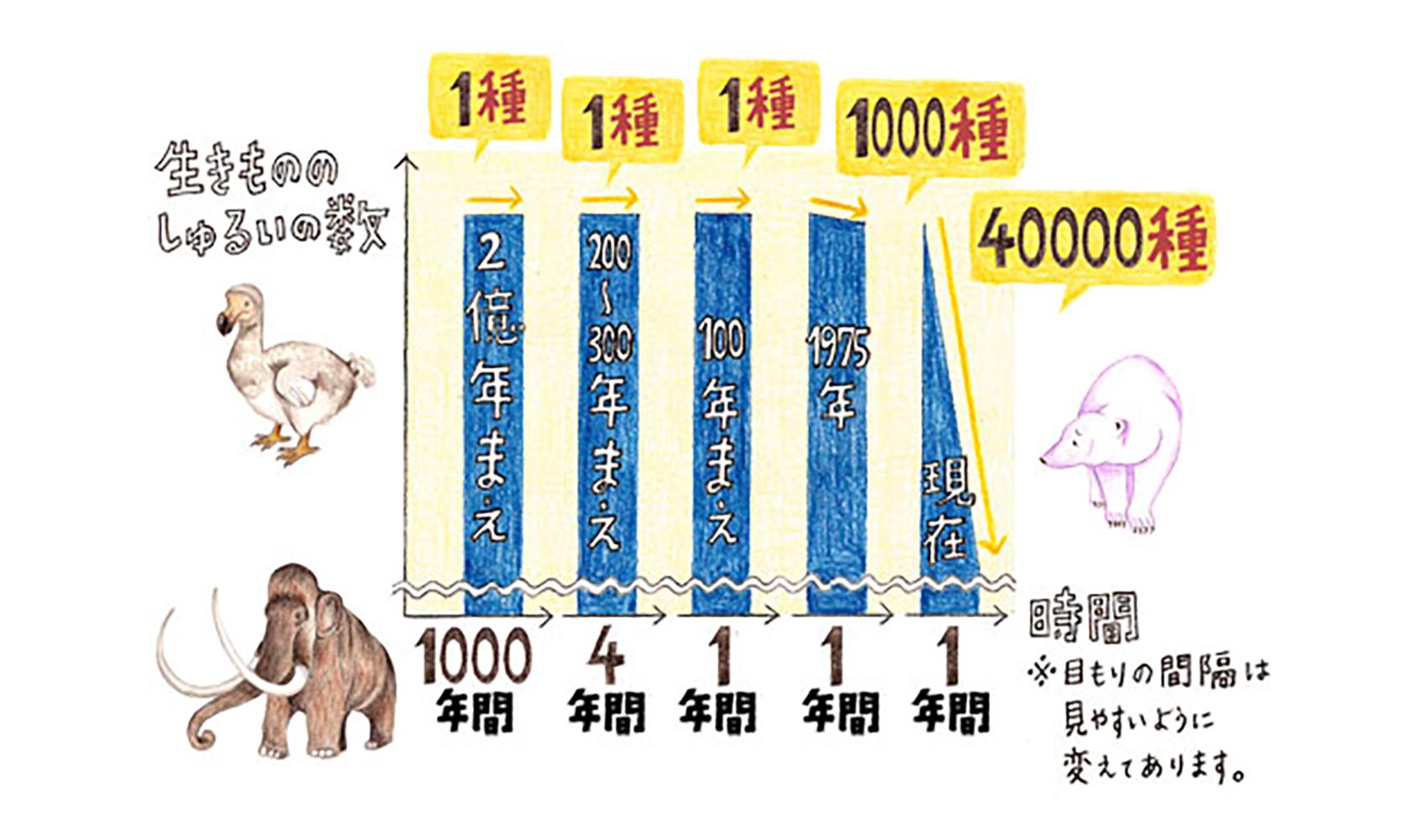 動物や植物は毎年どのくらい絶滅しているのですか?