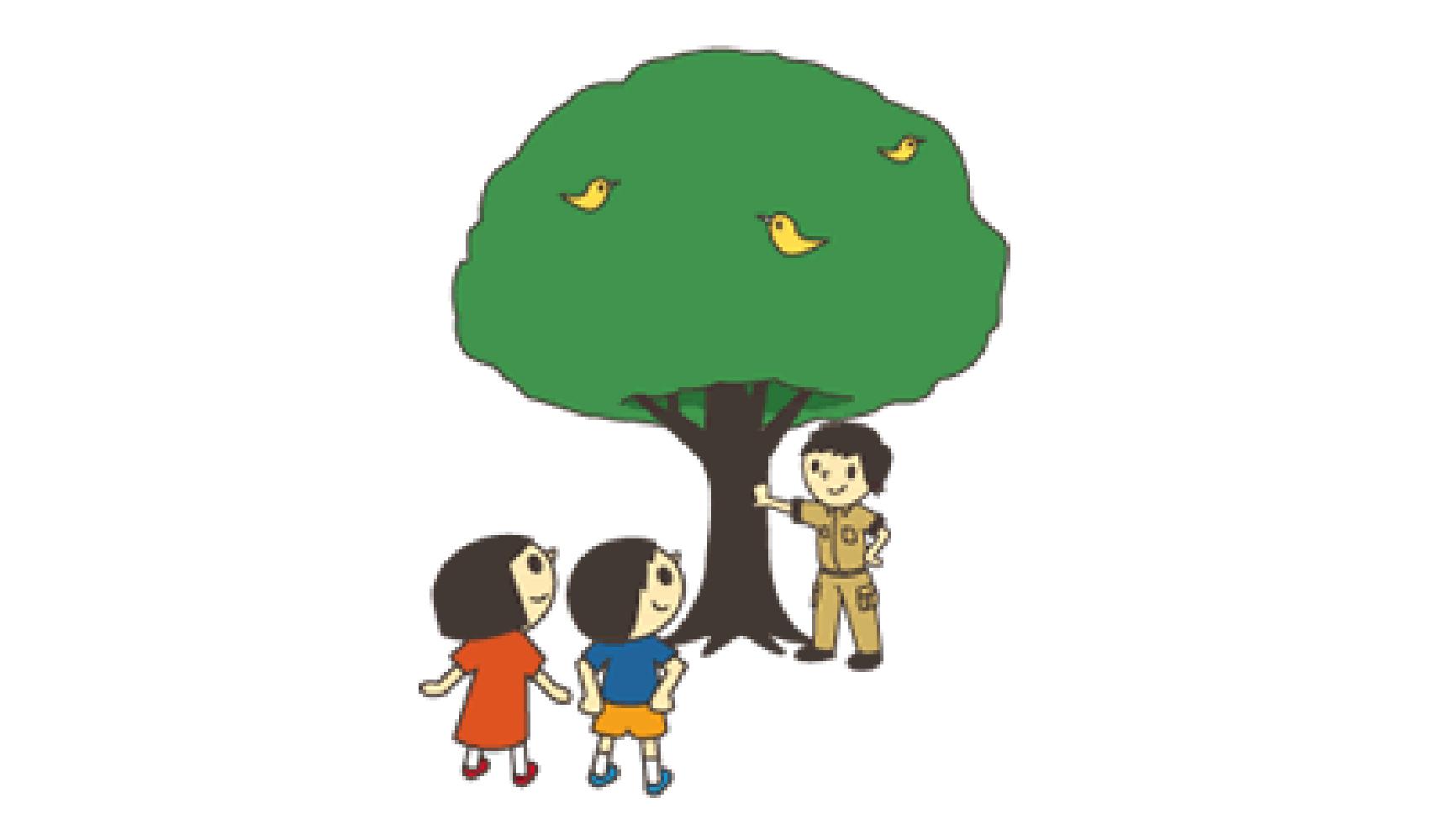 子ども樹木博士