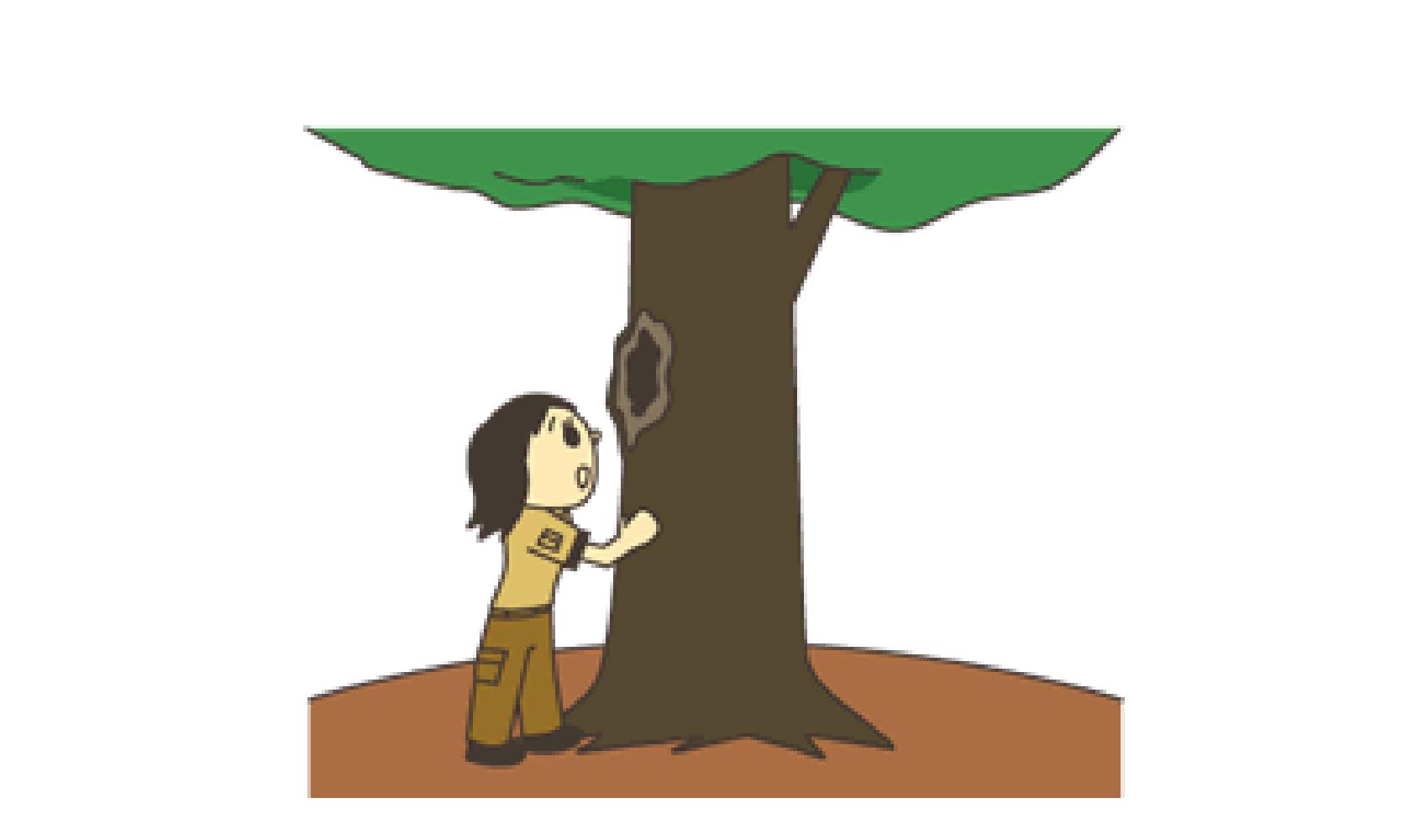 民間資格 樹木医