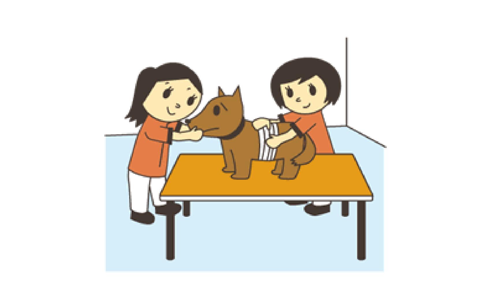 民間資格 動物看護師