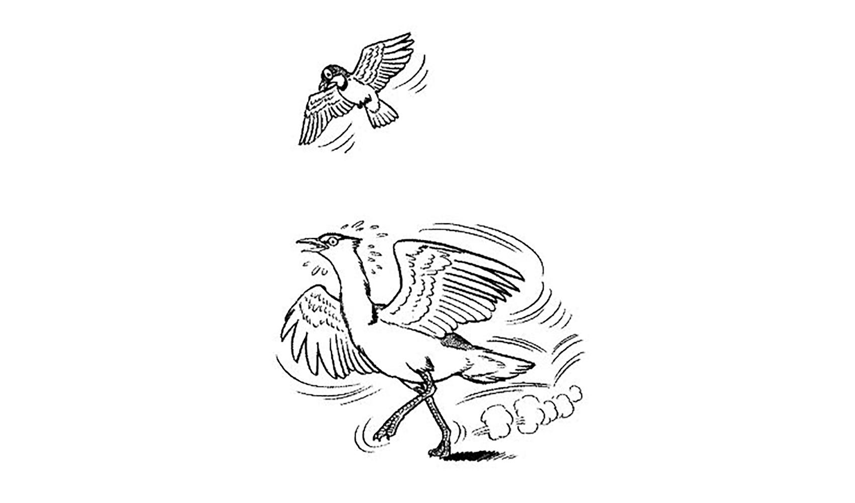 鳥はどうしてとべるの