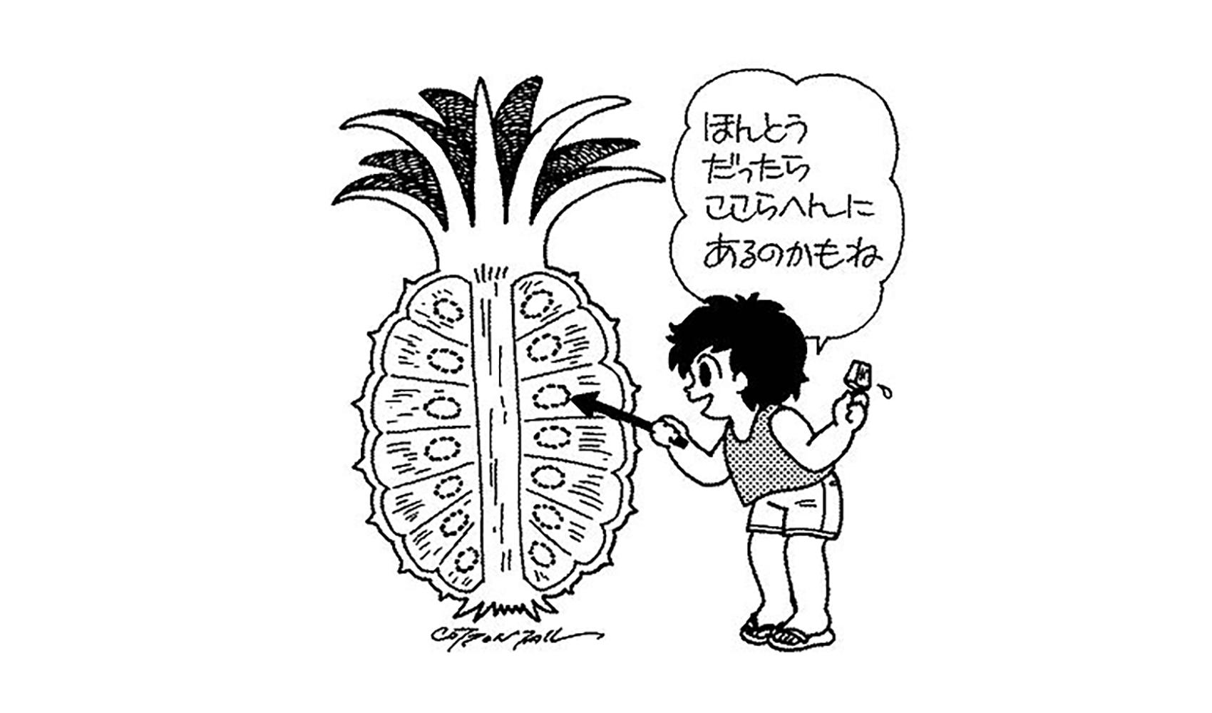 パイナップルに種はあるの,あるならどこにあるの