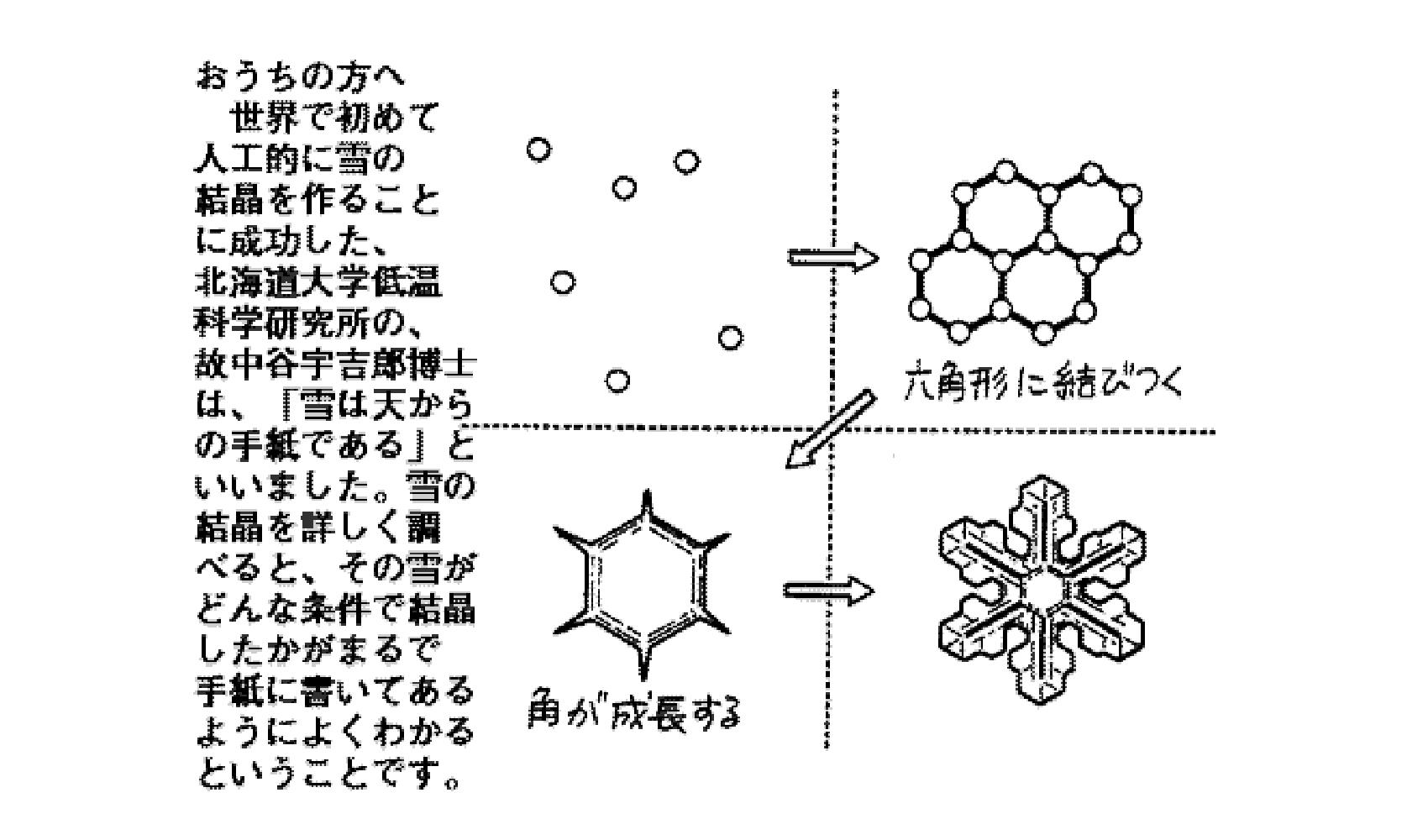 どうして雪の結晶は6角形になるの