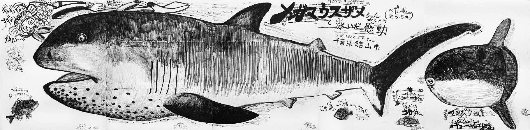 さかなクン「メガマウスザメちゃんと泳いだ感動  千葉県館山市」2020年 筆ペン