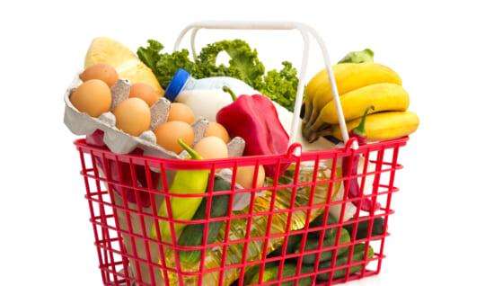 「地球防衛隊SDGs」第10話解説編「家庭での食品ロスを減らすための 3ないルール」