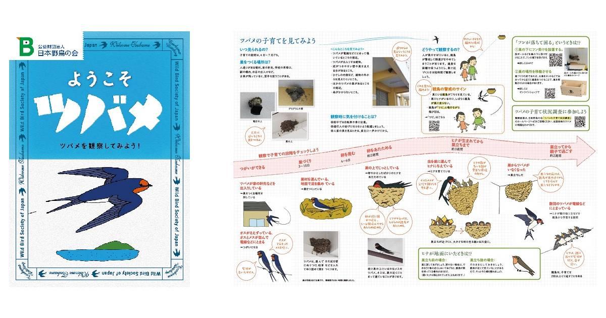 ツバメの巣作りやヒナの成長を観察! 日本野鳥の会が小冊子『ようこそツバメ』を無料配布